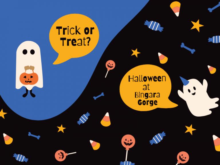 Bingara Halloween 2021
